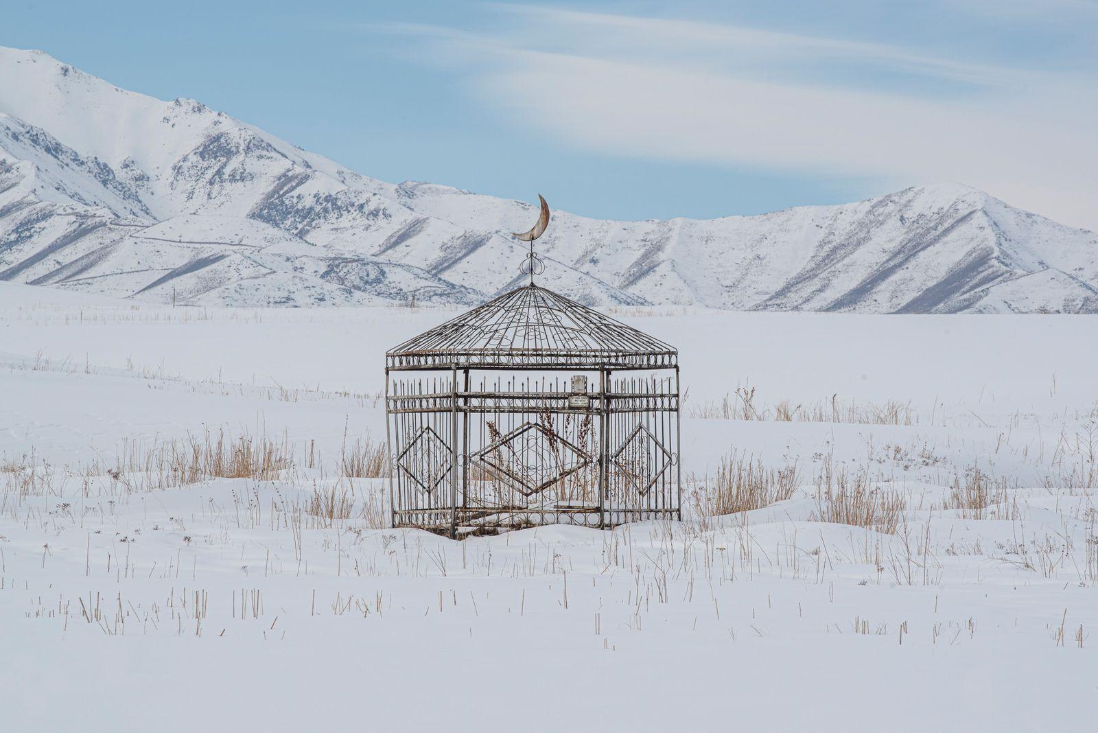 The Last Yurt