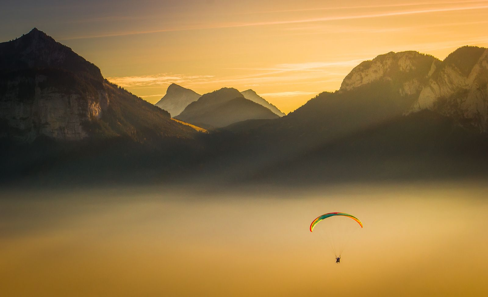 Gliding above the gold