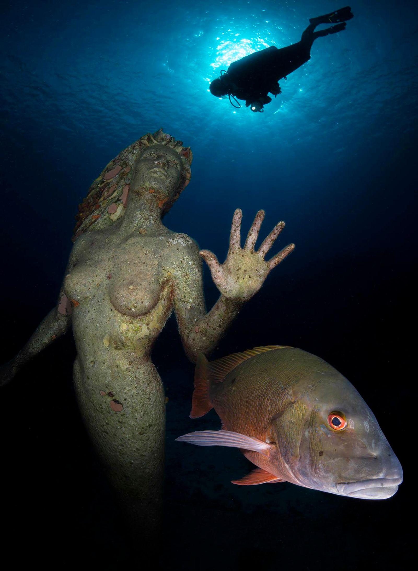 Underwater Protector
