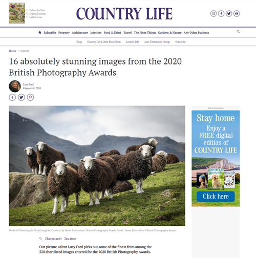 Country Life - Online